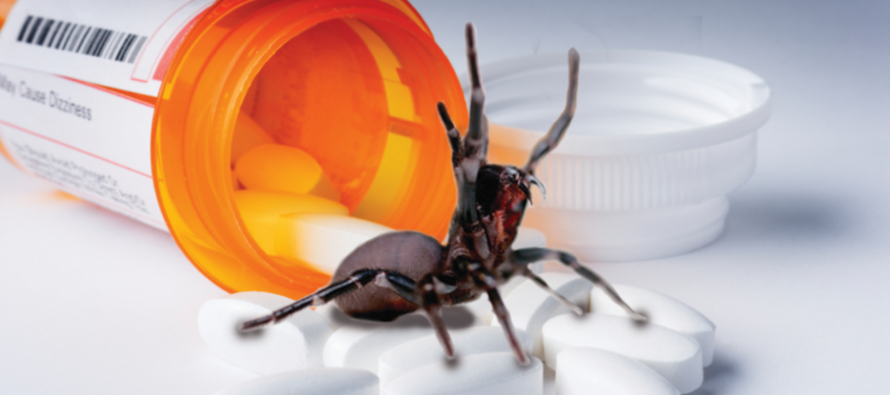 Using Poisonous Spider Toxins as Pain Medication