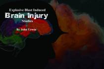 Explosive Blast-Induced Brain Injury Studies