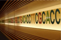 Archiving Data with the Language of Life: DNA as a Storage Medium