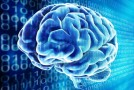 Is Google Ruining Your Memory? The Science of Memory in the Digital Age
