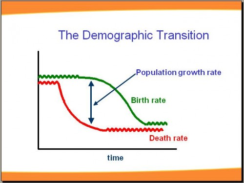 the demographic transition essay Demographic transition theory refers to a mathematical model which explains the change in demographic trends as countries move from preindustrial to industrialized.