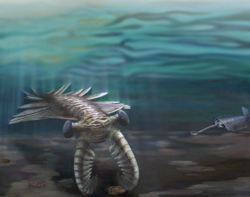 A depiction of marine life during the Cambrian Period. Courtesy of Katrina Kenny and Nobumichi Tamura.