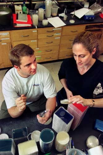 Pictured on the right, Jo Handelsman examining petri dish samples with a graduate student in lab. Courtesy of the University of Wisconsin-Madison.