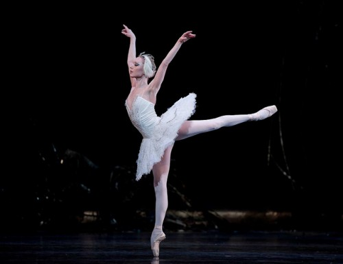 A ballerina can execute multiple pirouettes without becoming dizzy. Courtesy of Bill Cooper.