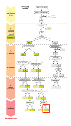 The decision tree depicts the logic behind the prioritization of each variant and is the main framework of the programming utilized to determine the cancer triggering variants. Courtesy of Mark Gerstein.