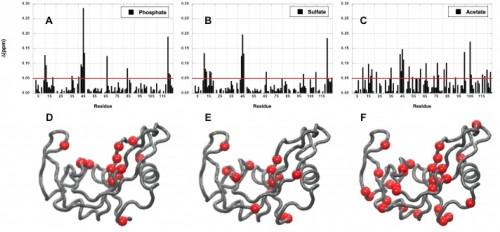 Chemical shift perturbations caused in RNase A by the addition of phosphate (A, D), sulfate (B, E), and acetate (C, F). Courtesy of Patrick Loria.