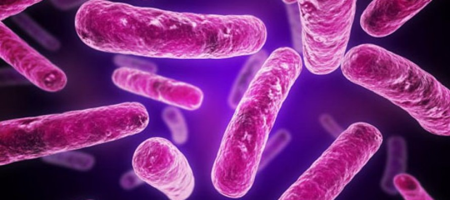 New Properties of Bacterial Cytoplasm Discovered