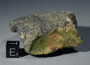 A portion of the NWA 7325 meteorite. Image courtesy of Stefan Ralew