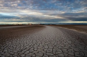 The Colorado River delta today: dry, cracked, barren. Image courtesy of Peter McBride IMAGE COURTESY OF PETER MCBRIDE
