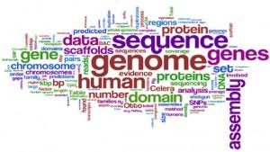 Picture 4. Genome seq. extent