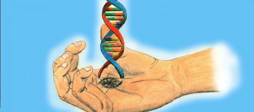Rewriting Life: How Changing the Genetic Code Changes Everything Else