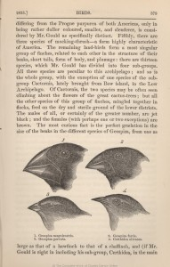 Finch beak morphology was described and diagrammed in Darwin's On the Origin of Species, which first proposed the theory of evolution. Image courtesy of the University of Oklahoma.