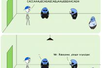 87.4 cartoon: Lost in Translation