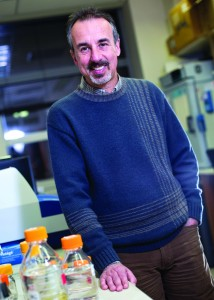 Eduardo Groisman is a professor of microbial pathogenesis at the Yale School of Medicine. He recently identified a form of motility in Salmonella that has escaped observation until now. Image Courtesy of Eduardo Groisman.