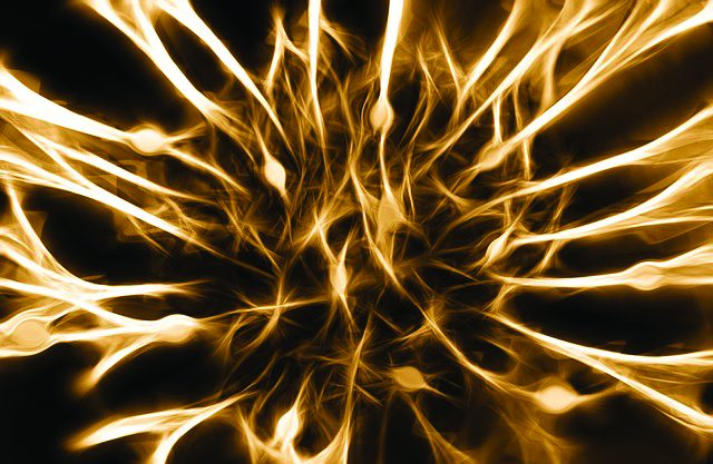 Promising Protein Illuminates Complexities of Neurons