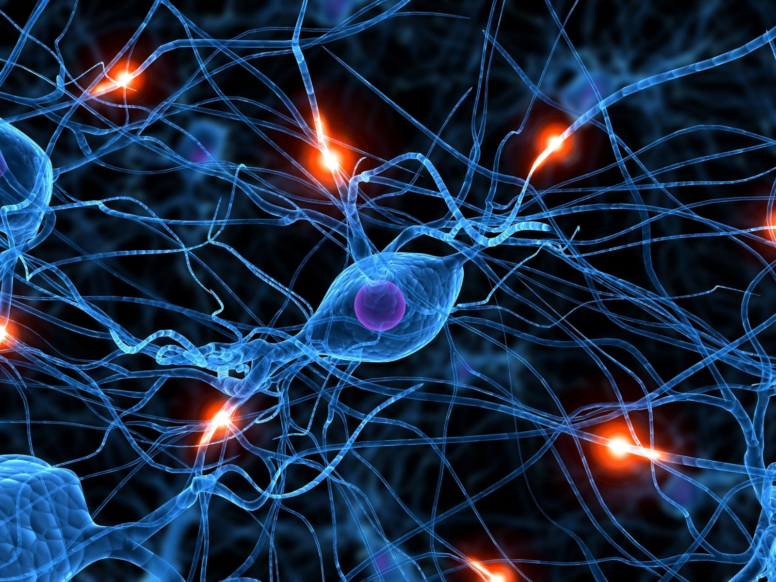 Changing A Memory: How Retroactive Interference Can Alter Memories