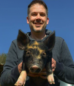 Mark Essig relaxes with a pig; industrial pigs today can reach over 300 pounds in less than a year after birth. Image courtesy of Mark Essig.