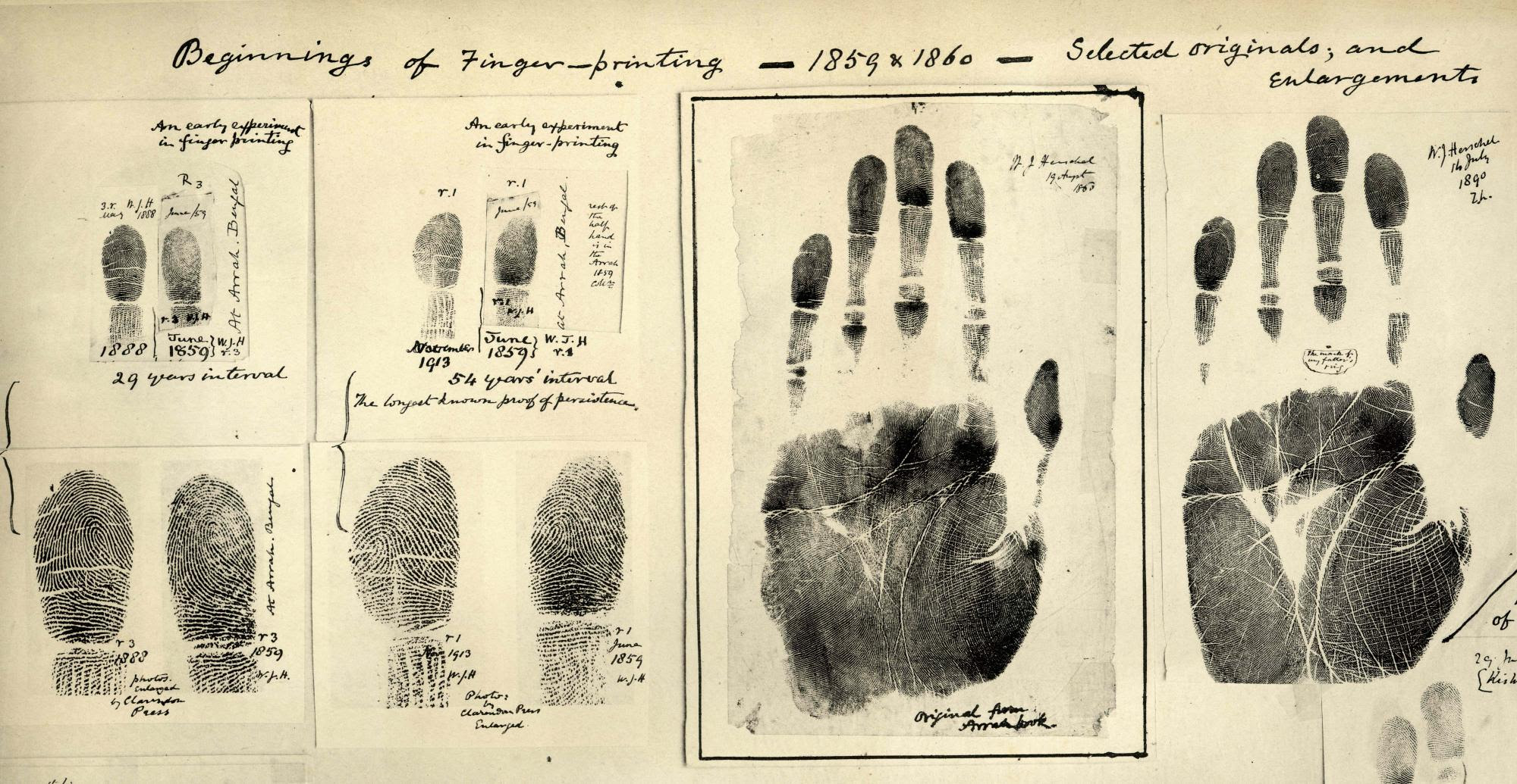 Foregone Forensics: A Brief History of Crime Solving | Yale