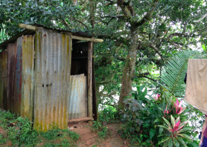 A shed toilet found near the river in Fiji. Although there is sufficient fresh water on the planet for everyone, millions still die from disease due to poor sanitation and lack of clean water. Image courtesy of Virginia Pitzer.