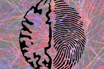 "Your MRI Machine Knows Who You Are: Unique ""brainprints"" can identify individuals"