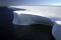Going Green: Giant Icebergs Cause Phytoplankton Blooms