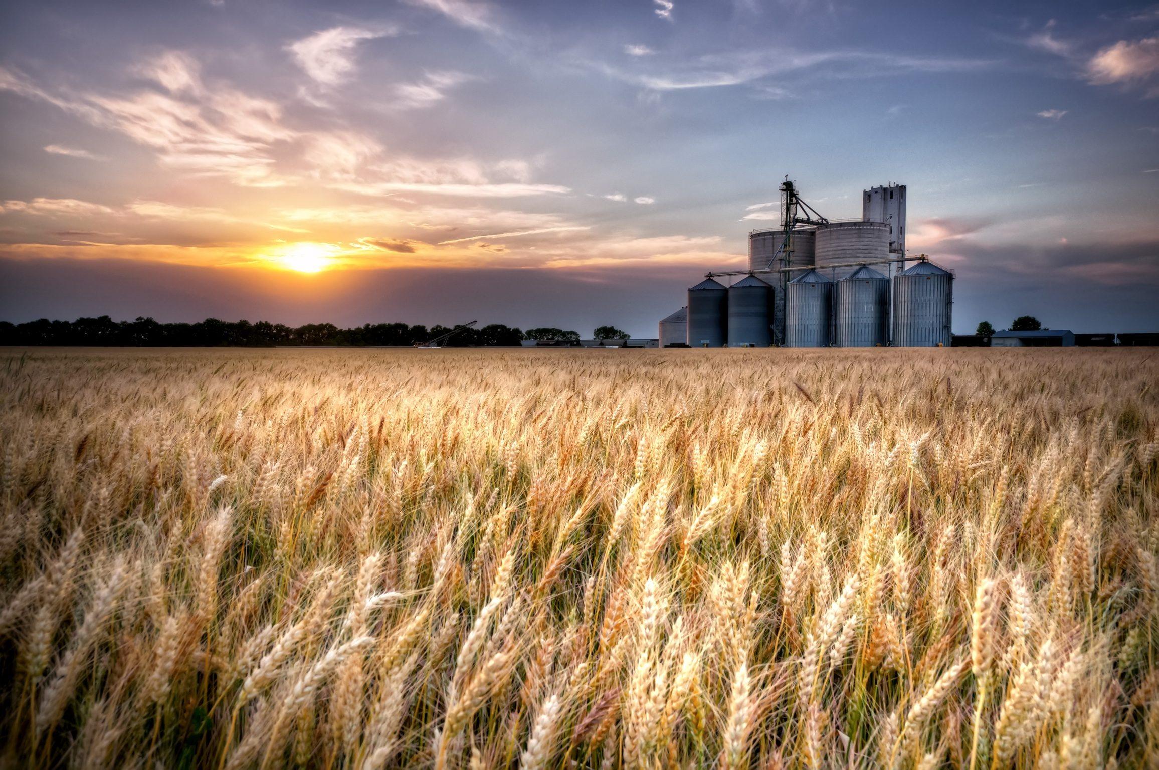 How Do We Value Nature? Market Breakdowns and Technological Bridges