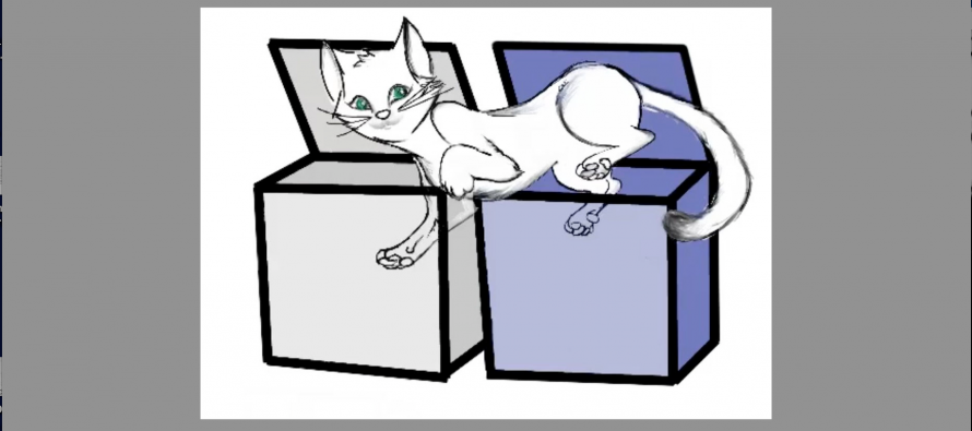 Schrodinger's (Twin) Cat: Quantum Computing Researchers Pioneer Two-Cavity Cat-States