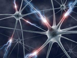 Q&A: How do Seizures Start?