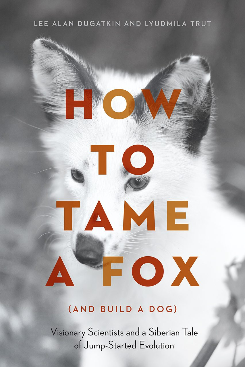 Science in the Spotlight: How to Tame a Fox (And Build a Dog)