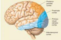 Demystifying Consciousness