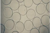 Mega-Useful Microcapsules