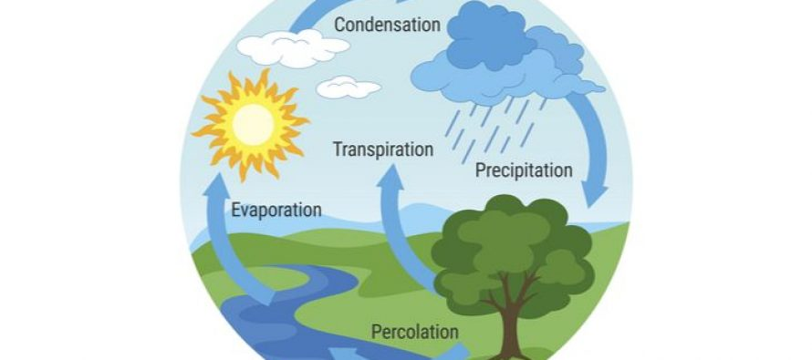 The Hidden Causes of Lake Evaporation
