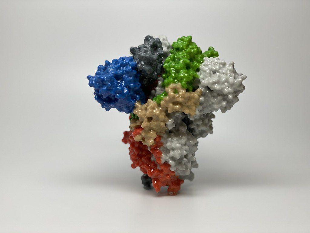 06/08 News Flash 6: Dual defense against COVID-19 virus binding to its receptor