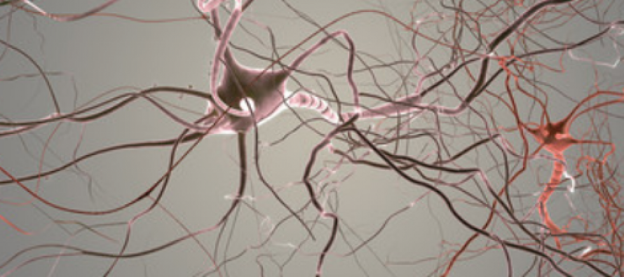Wiring of Psychopathic Brains: Neural networks hold clues to psychopathy