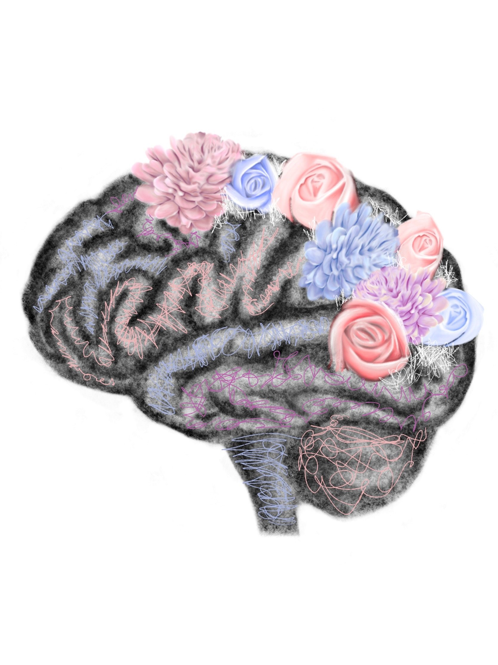 """Adding the """"A"""" To STEAM: Brain Sciences and the Arts with Susan Magsamen"""