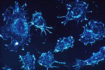 Killing Cancerous Cells: Using Genetically Engineered T-Cells to Target Tumors