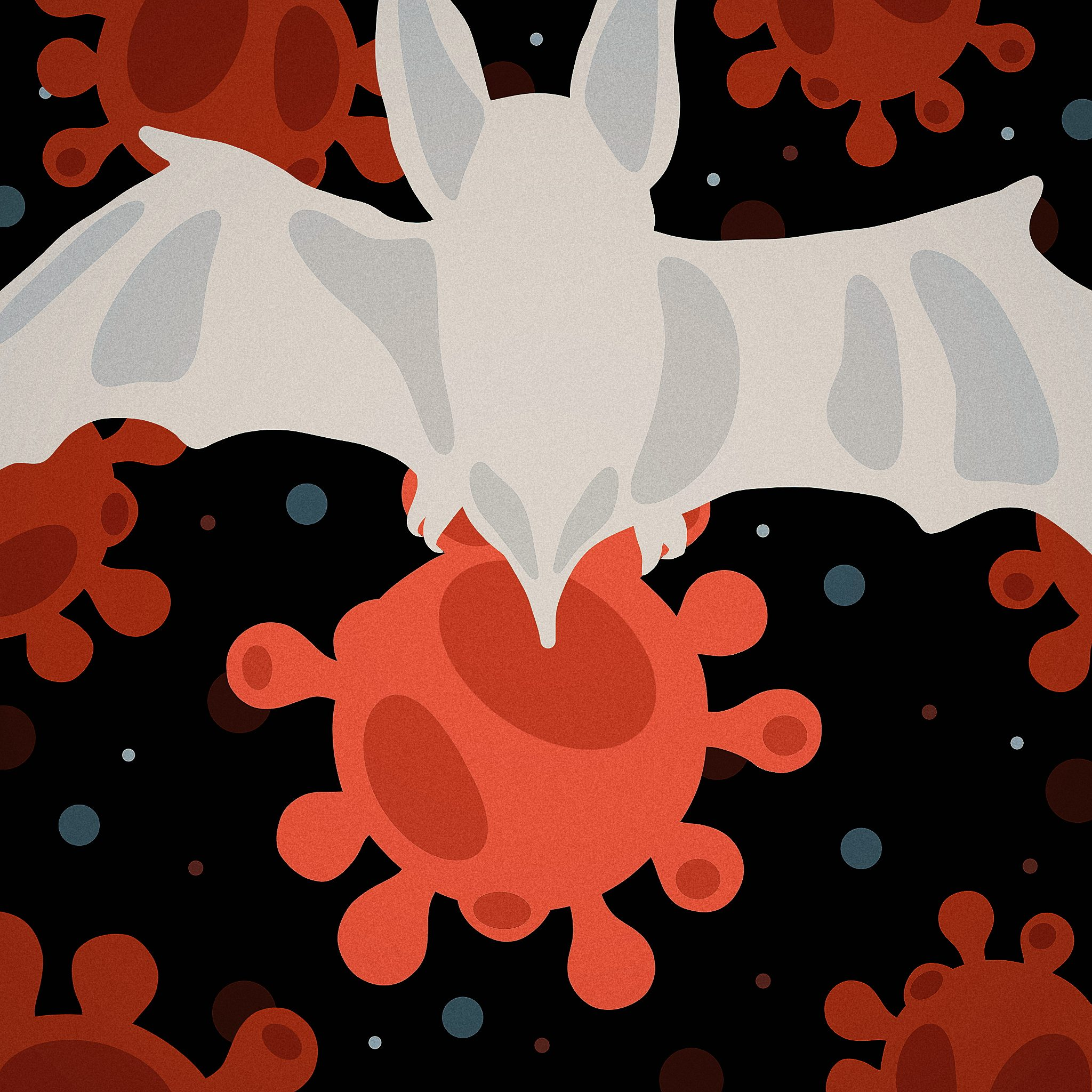 07/15 News Flash 3: How Bats Live Longer and Tolerate Viruses